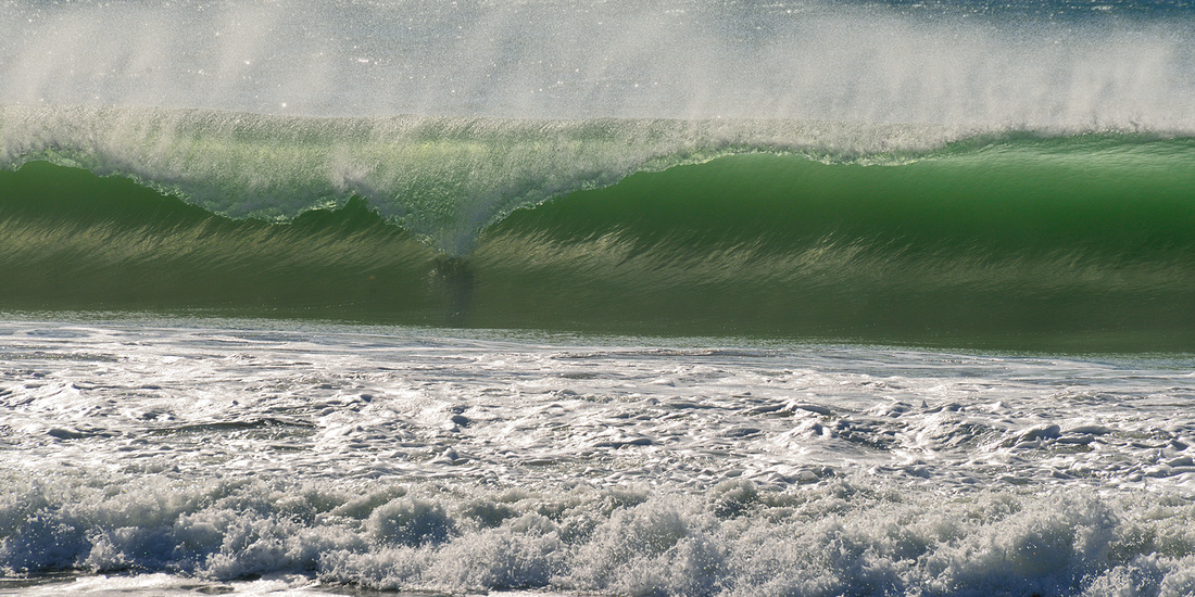 CAYUCUS WAVE